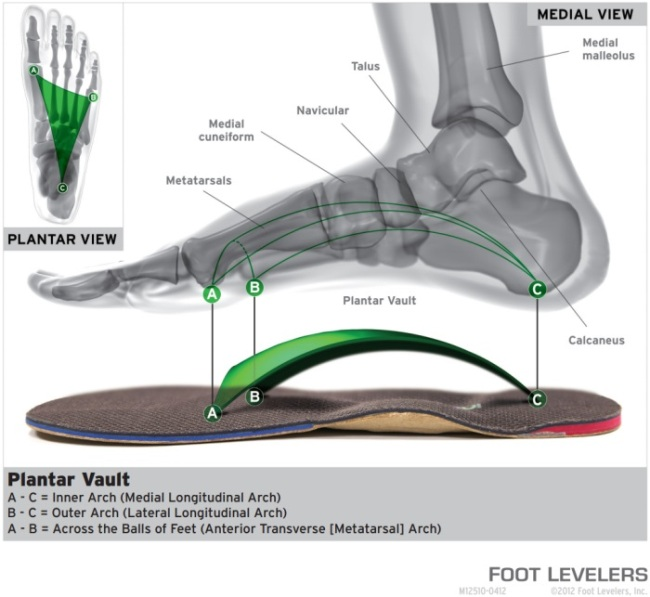 foot-levelers_3-arch-difference650x597