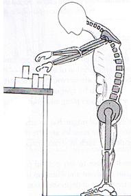 (圖二)不正確工作姿勢令肌肉及肌腱緊張及僵硬